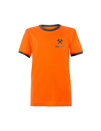 Picture of Children's FC Shakhtar T-shirt with a grey Hammers print